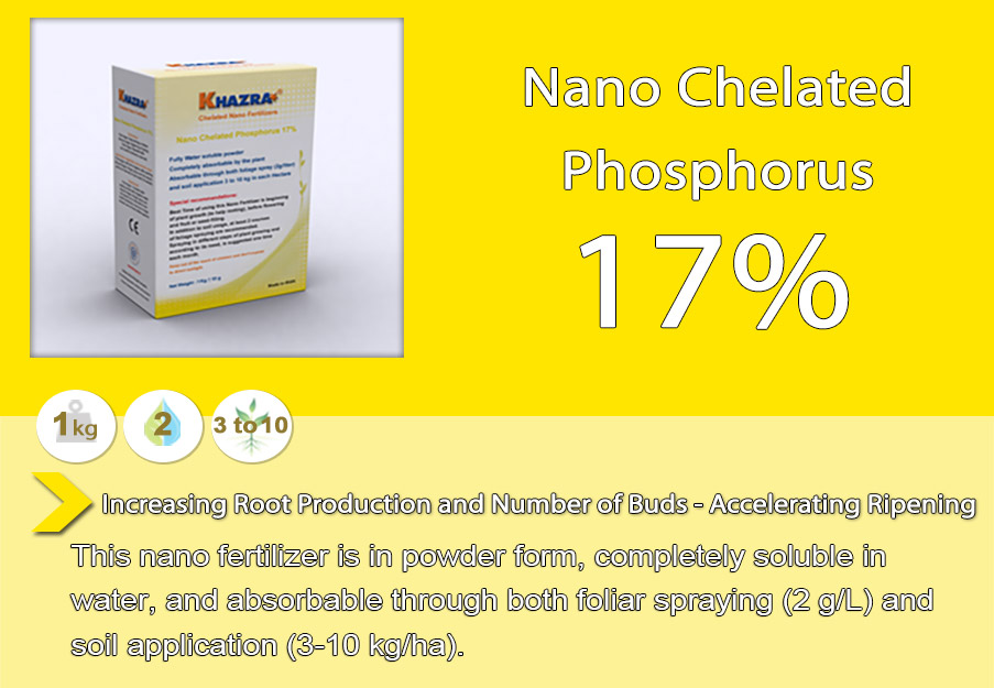 Khazra Nano Chelated Phosphorus Fertilizer